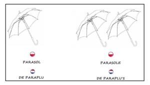 parasol_gramatyka_nauka_niderlandzkiego_lekcja_holenderskiego