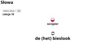 gramatyka_de_het_een_nauka_niderlandzkiego_lekcja_holenderskiego