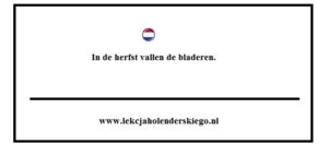 gramatyka_nauka_niderlandzkiego_lekcja_holenderskiego