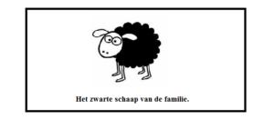 owca nauka niderlandzkiego