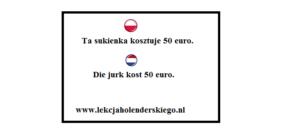 liczba_mnoga_gramatyka_nauka_niderlandzkiego_lekcja_holenderskiego