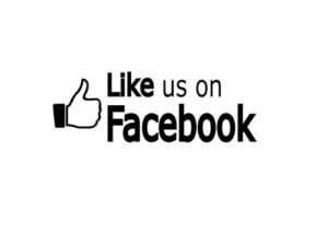 fb logo 3