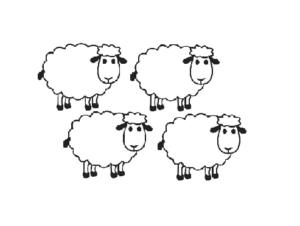 schapen_gramatyka_nauka_niderlandzkiego_lekcja_holenderskiego