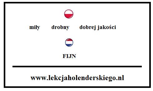 lekcja holenderskiego fijn