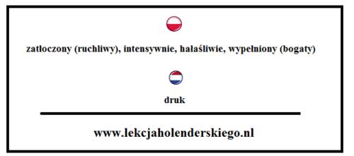 nauka niderlandzkiego druk