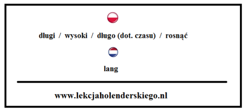 nauka niderlandzkiego lang