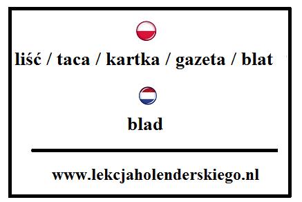 blad_nauka_niderlandzkiego_lekcja_holenderskiego